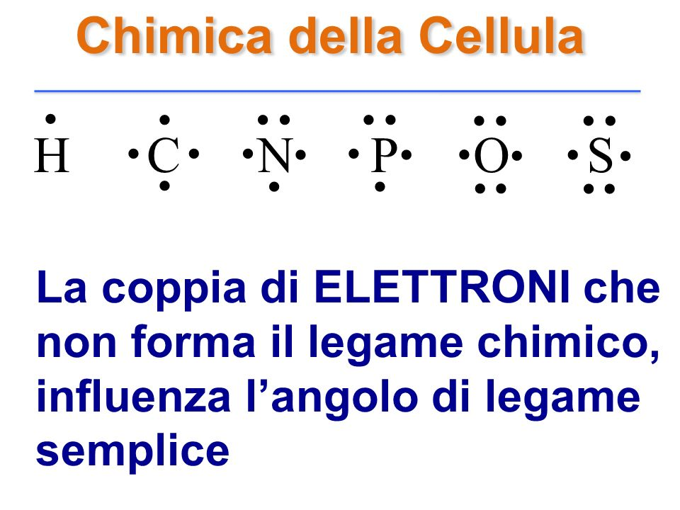 . Chimica della Cellula H C N P O S