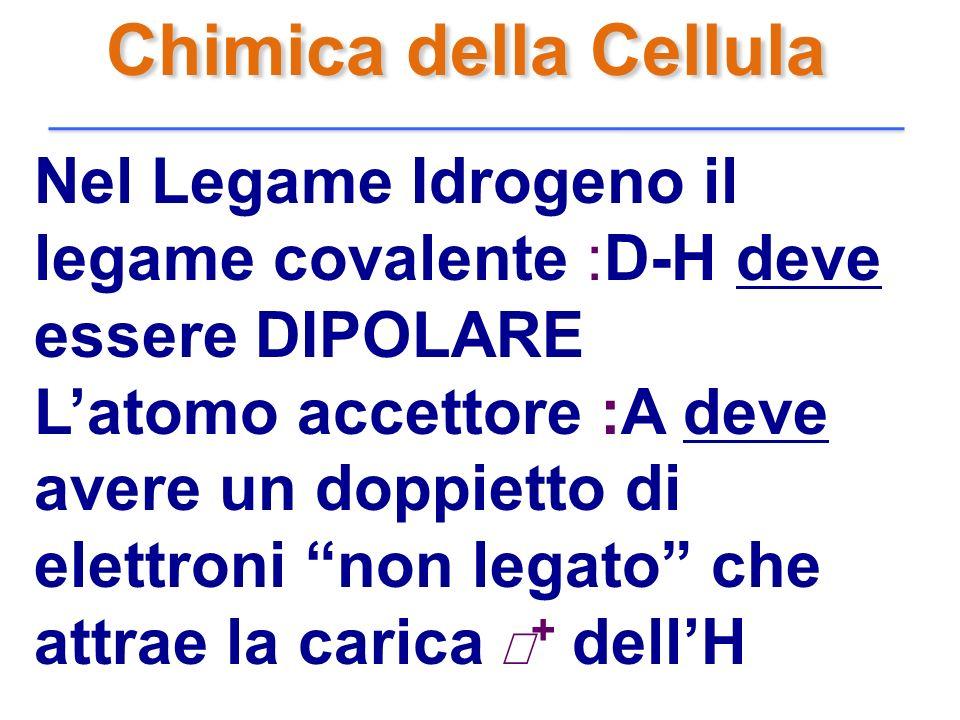 Chimica della Cellula Nel Legame Idrogeno il legame covalente :D-H deve essere DIPOLARE.