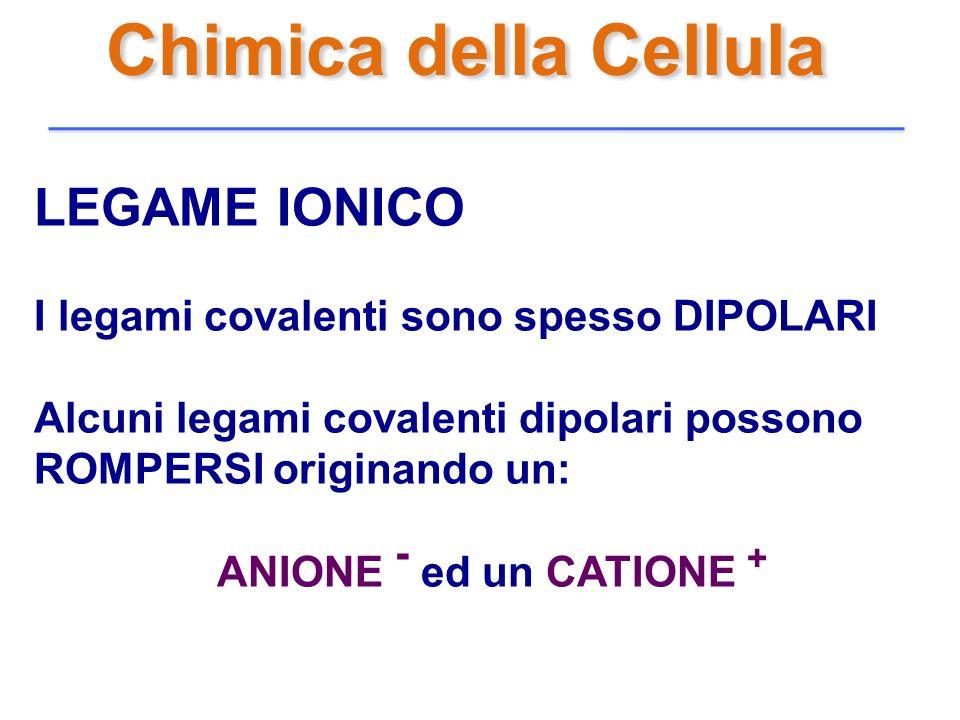 Chimica della Cellula LEGAME IONICO