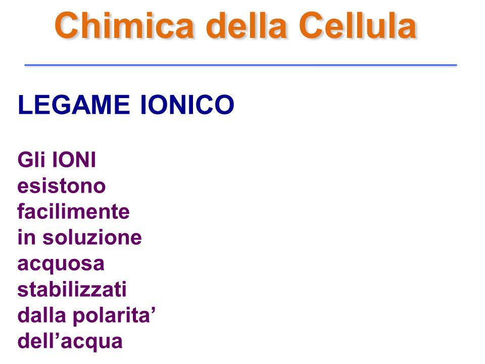 Chimica della Cellula LEGAME IONICO Gli IONI esistono facilimente
