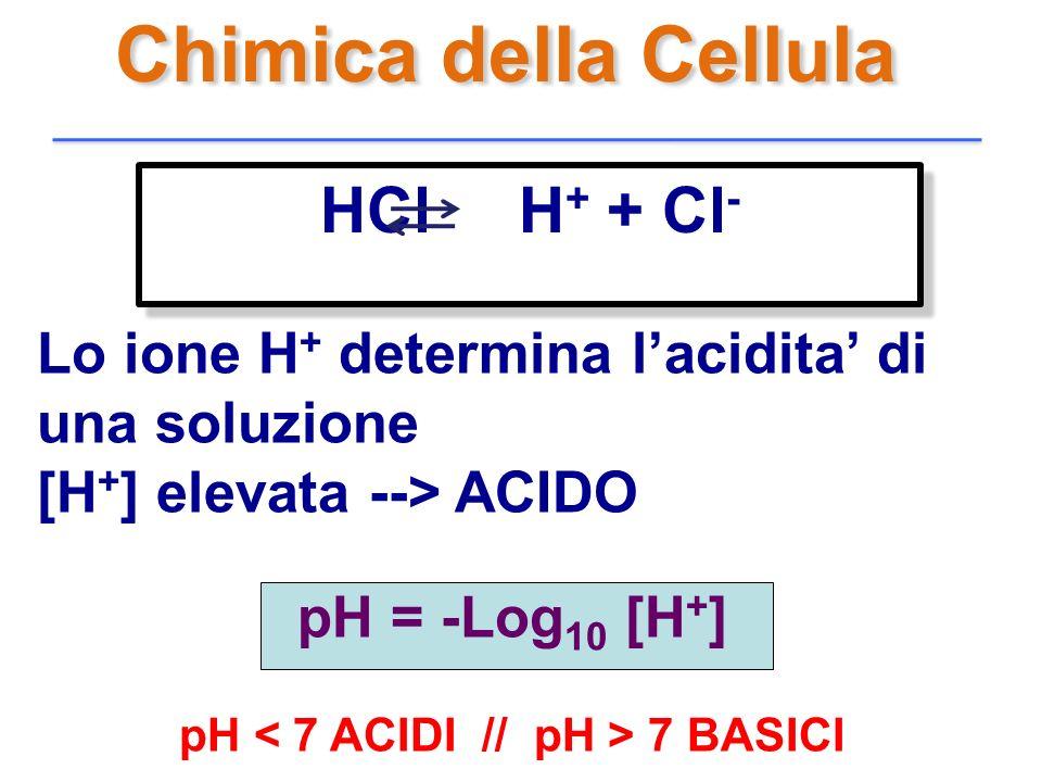 pH < 7 ACIDI // pH > 7 BASICI