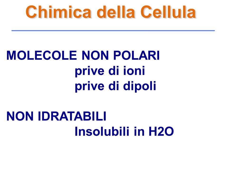 Chimica della Cellula MOLECOLE NON POLARI prive di ioni