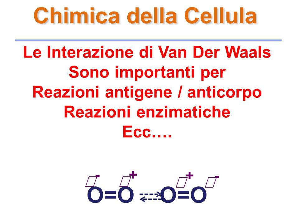Le Interazione di Van Der Waals Reazioni antigene / anticorpo