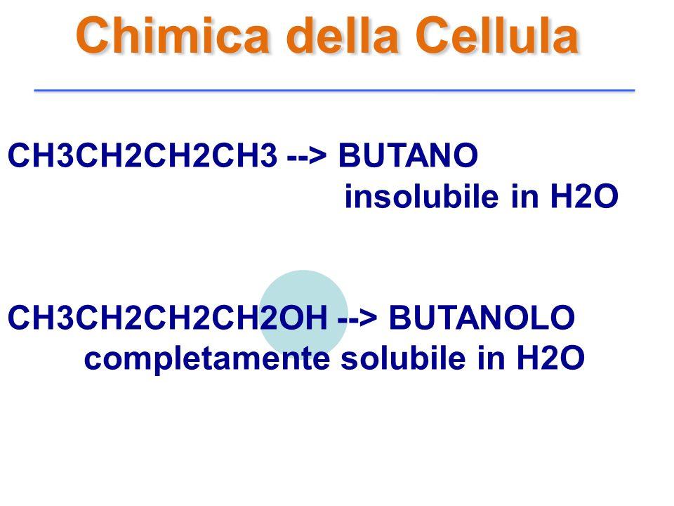 Chimica della Cellula CH3CH2CH2CH3 --> BUTANO insolubile in H2O
