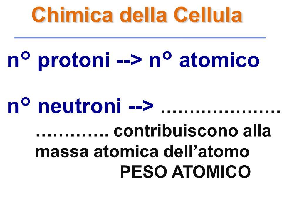 n° protoni --> n° atomico n° neutroni --> ……………………