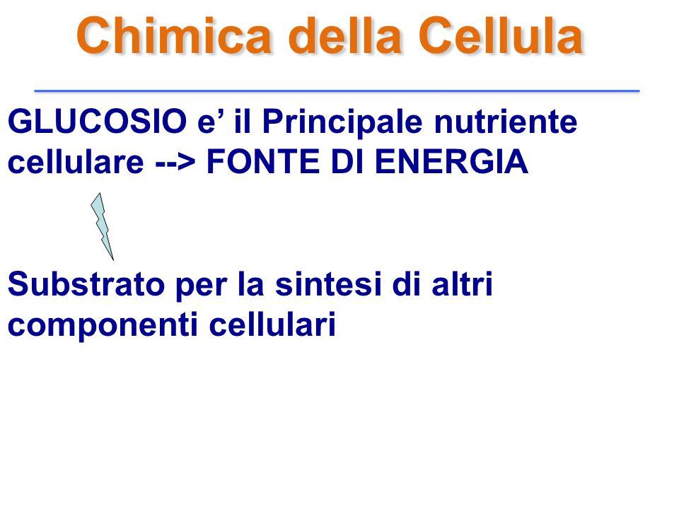 Chimica della Cellula GLUCOSIO e' il Principale nutriente cellulare --> FONTE DI ENERGIA.