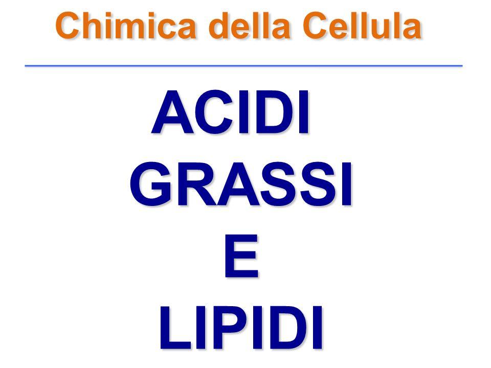 Chimica della Cellula ACIDI GRASSI E LIPIDI