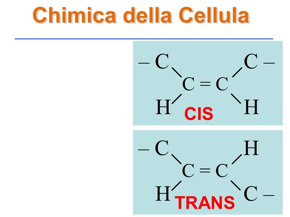Chimica della Cellula C = C C – – C H CIS TRANS C = C H – C C –