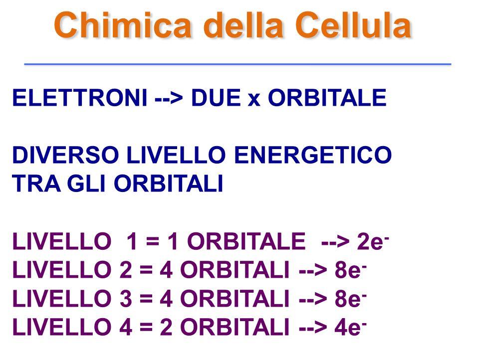 Chimica della Cellula ELETTRONI --> DUE x ORBITALE