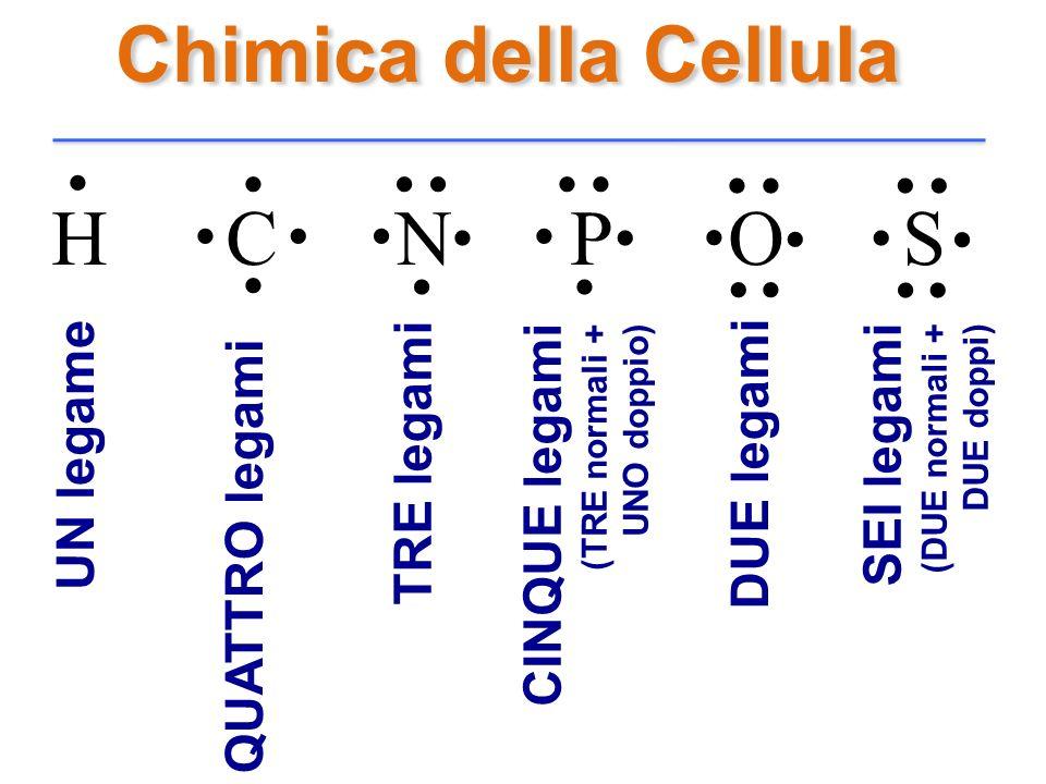 . Chimica della Cellula H C N P O S UN legame TRE legami DUE legami
