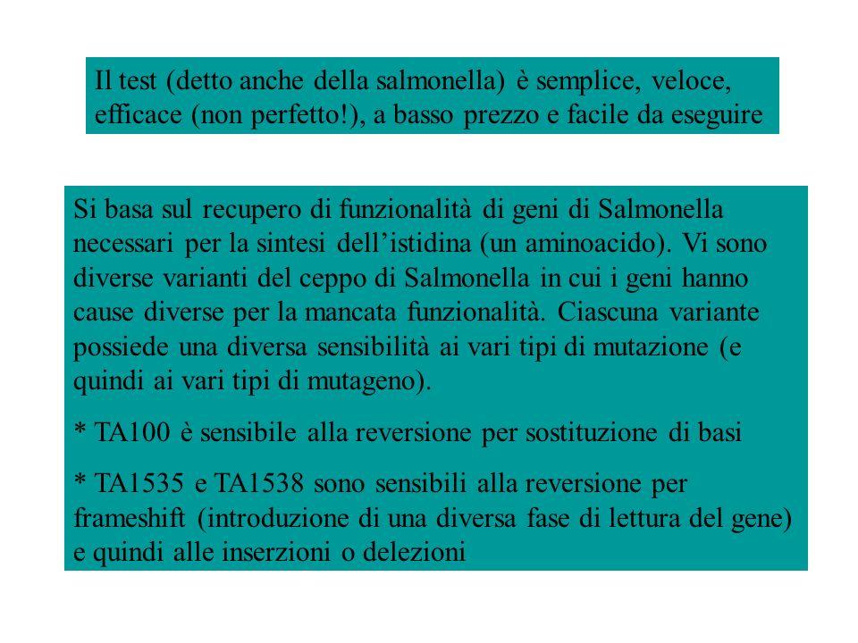 Il test (detto anche della salmonella) è semplice, veloce, efficace (non perfetto!), a basso prezzo e facile da eseguire
