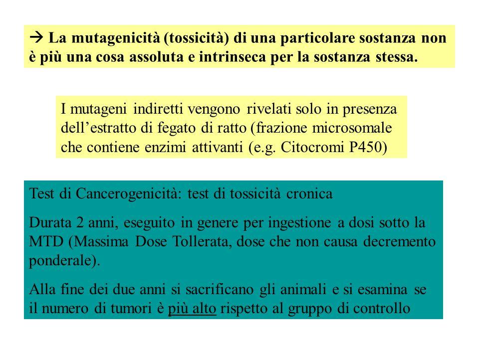  La mutagenicità (tossicità) di una particolare sostanza non è più una cosa assoluta e intrinseca per la sostanza stessa.