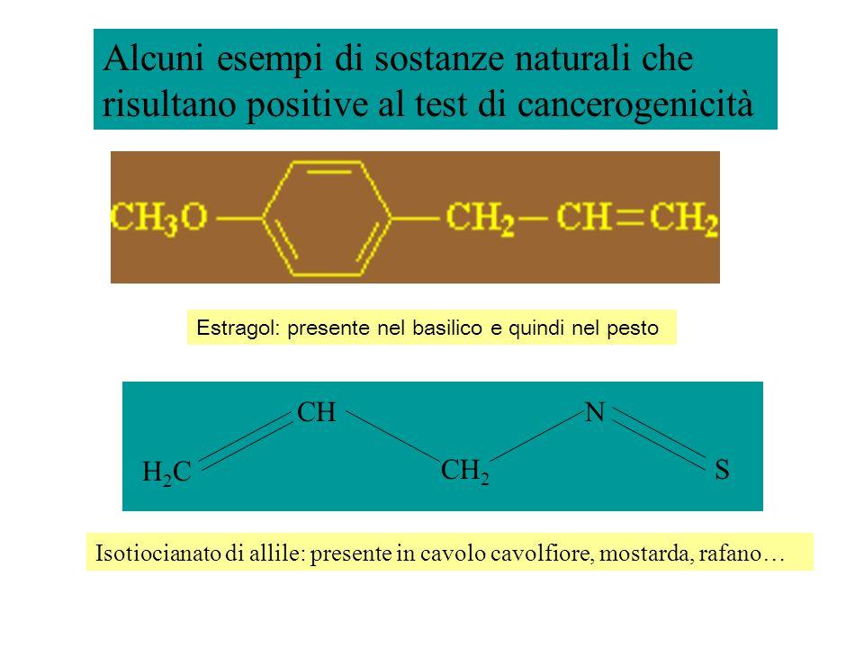 Alcuni esempi di sostanze naturali che risultano positive al test di cancerogenicità
