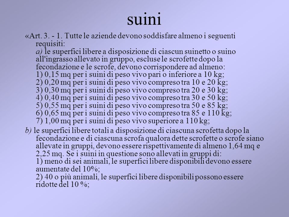 suini