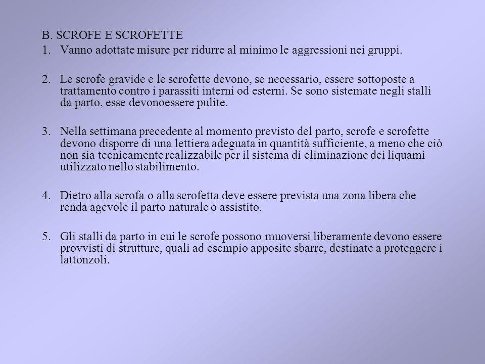 B. SCROFE E SCROFETTE Vanno adottate misure per ridurre al minimo le aggressioni nei gruppi.