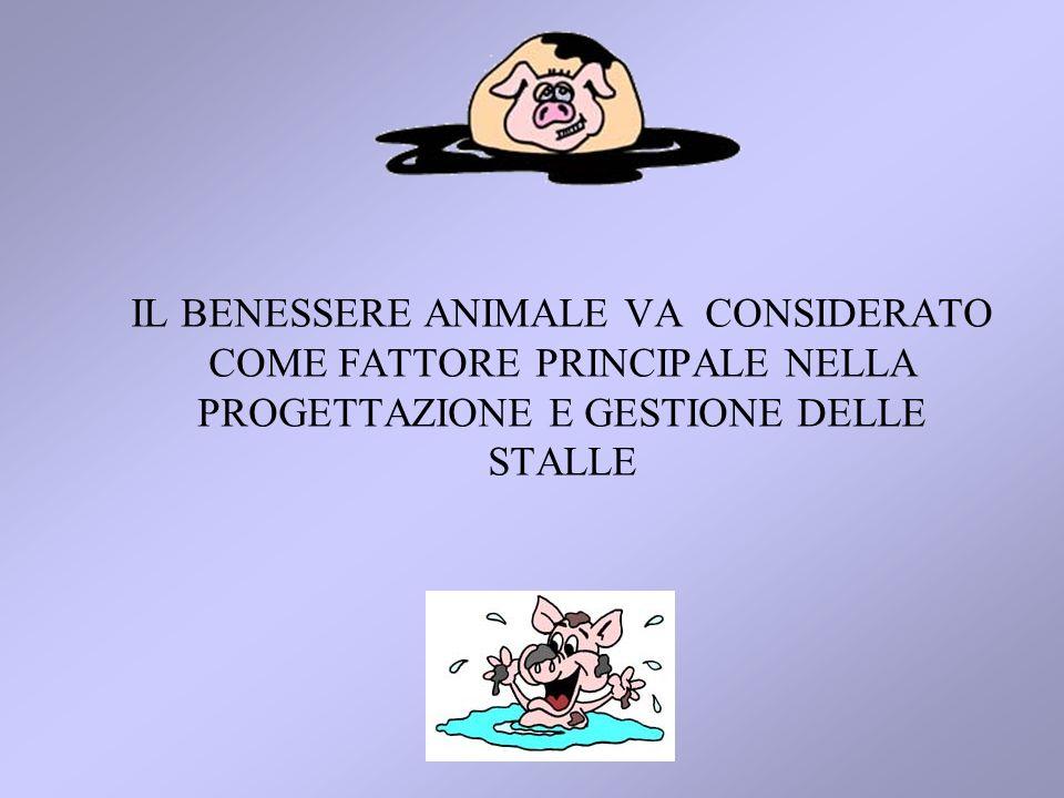 IL BENESSERE ANIMALE VA CONSIDERATO COME FATTORE PRINCIPALE NELLA PROGETTAZIONE E GESTIONE DELLE STALLE