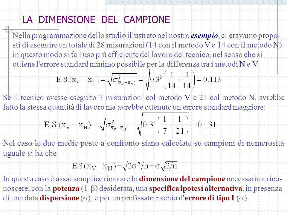 LA DIMENSIONE DEL CAMPIONE