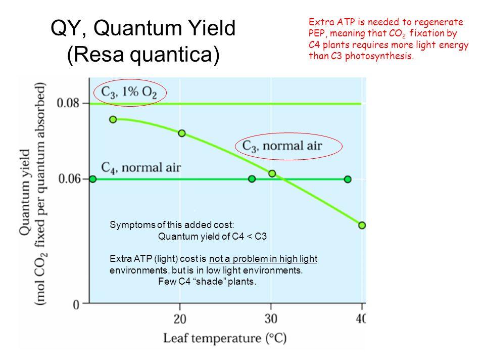 QY, Quantum Yield (Resa quantica)
