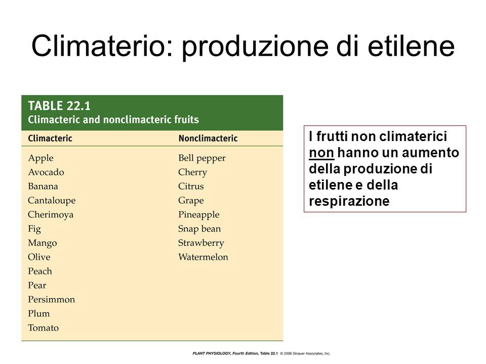 Climaterio: produzione di etilene