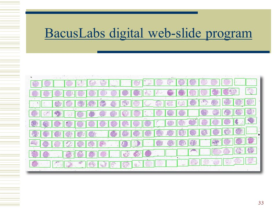BacusLabs digital web-slide program