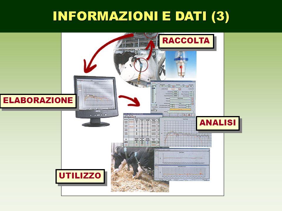INFORMAZIONI E DATI (3) RACCOLTA ELABORAZIONE ANALISI UTILIZZO