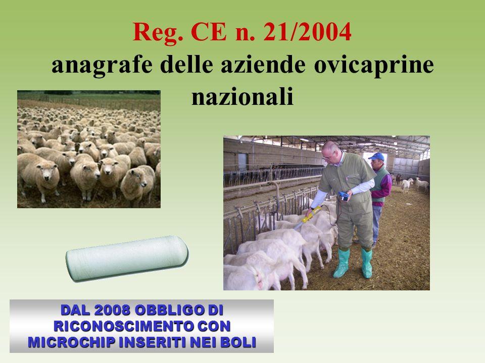 Reg. CE n. 21/2004 anagrafe delle aziende ovicaprine nazionali