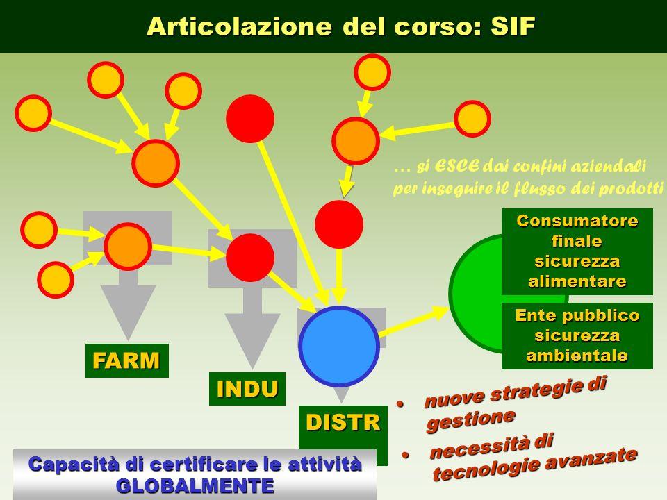 Articolazione del corso: SIF