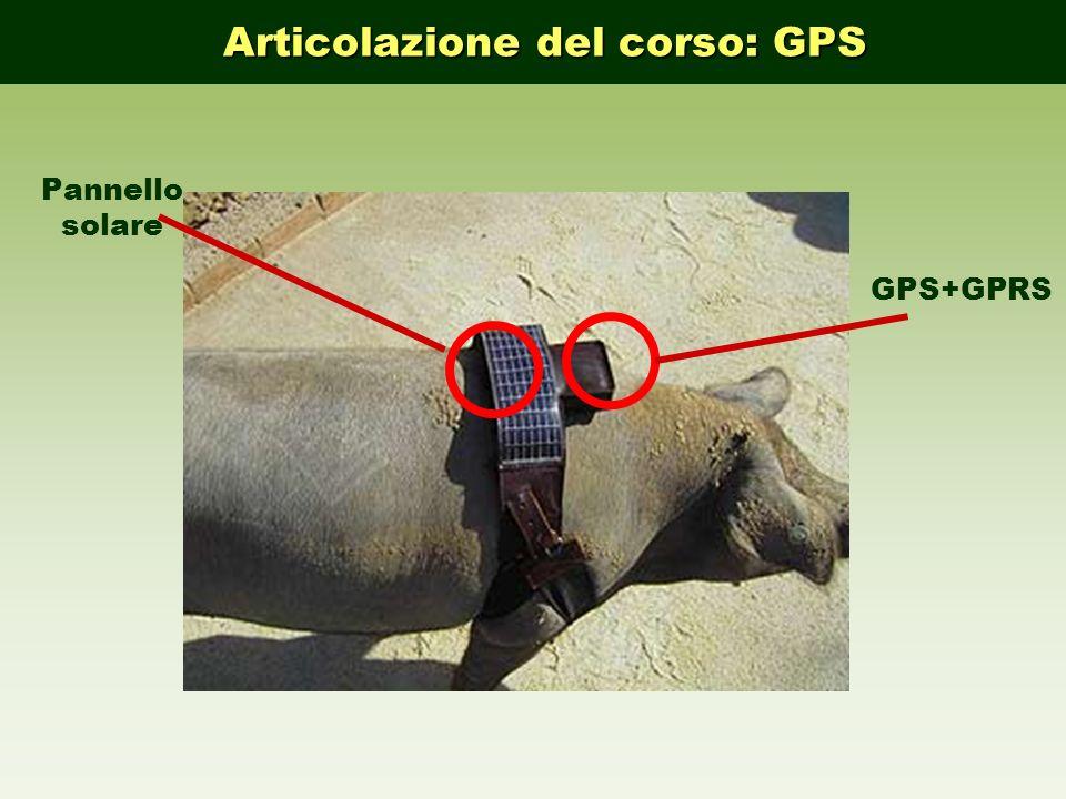 Articolazione del corso: GPS