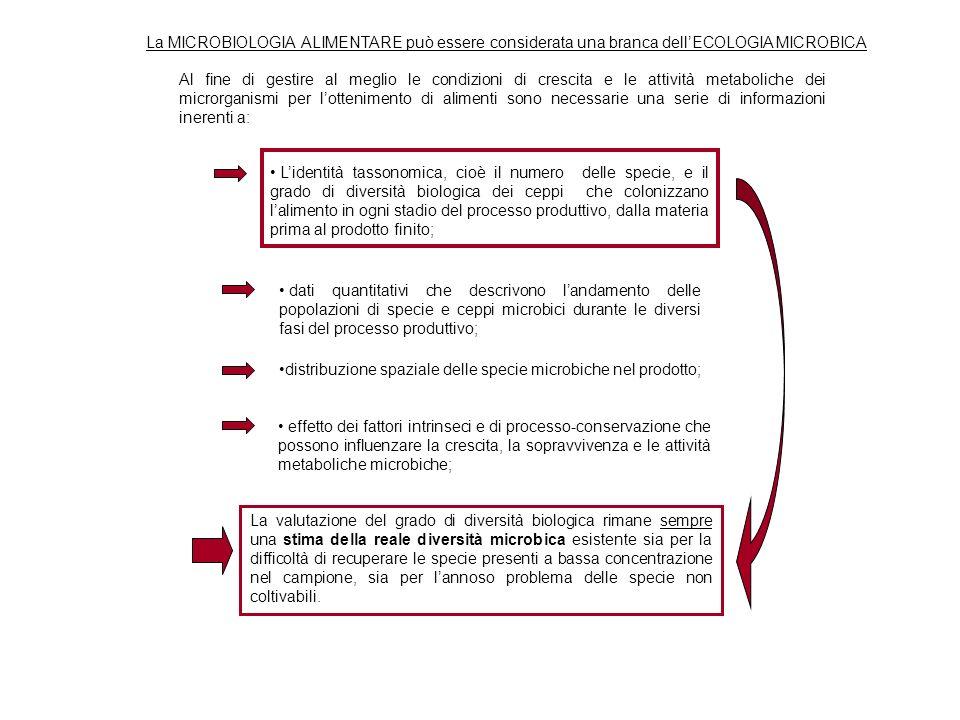 La MICROBIOLOGIA ALIMENTARE può essere considerata una branca dell'ECOLOGIA MICROBICA