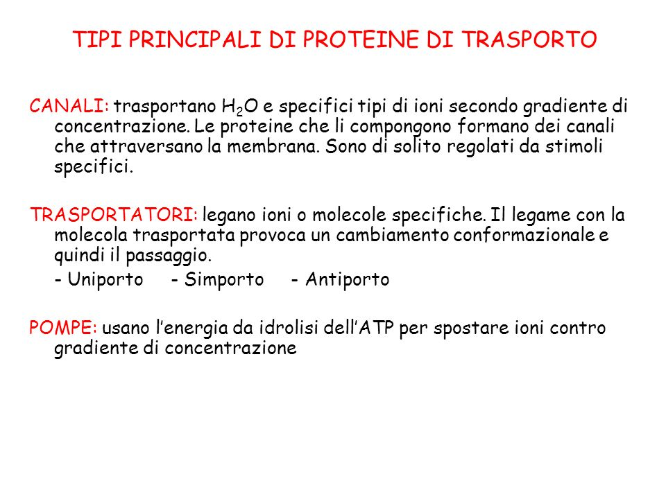 TIPI PRINCIPALI DI PROTEINE DI TRASPORTO