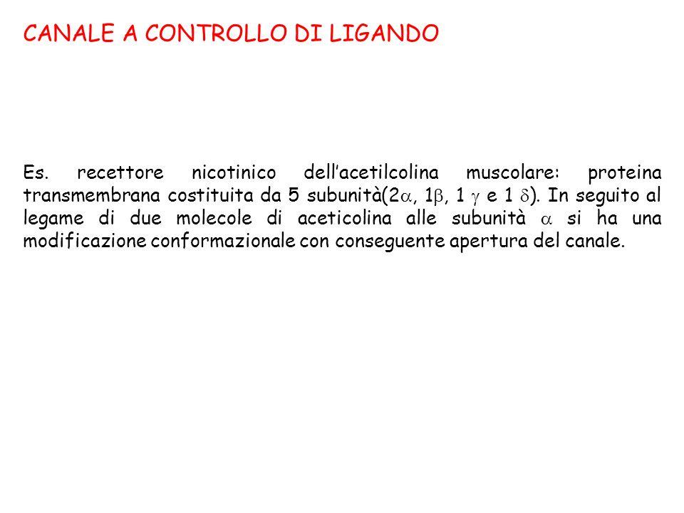 CANALE A CONTROLLO DI LIGANDO