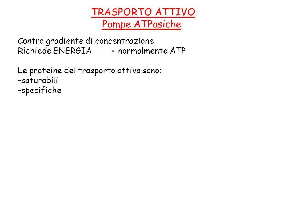 TRASPORTO ATTIVO Pompe ATPasiche Contro gradiente di concentrazione