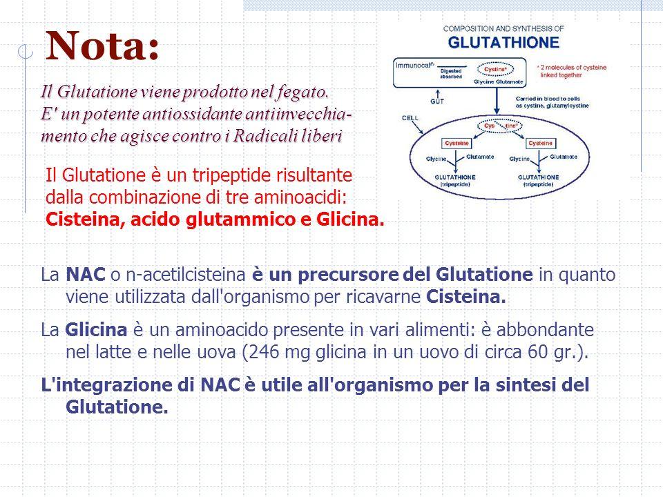 Nota: Il Glutatione viene prodotto nel fegato.