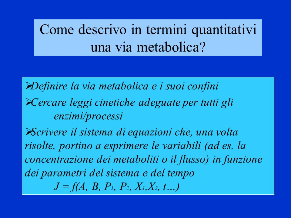 Come descrivo in termini quantitativi una via metabolica
