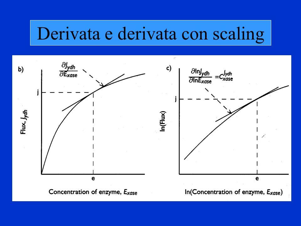 Derivata e derivata con scaling