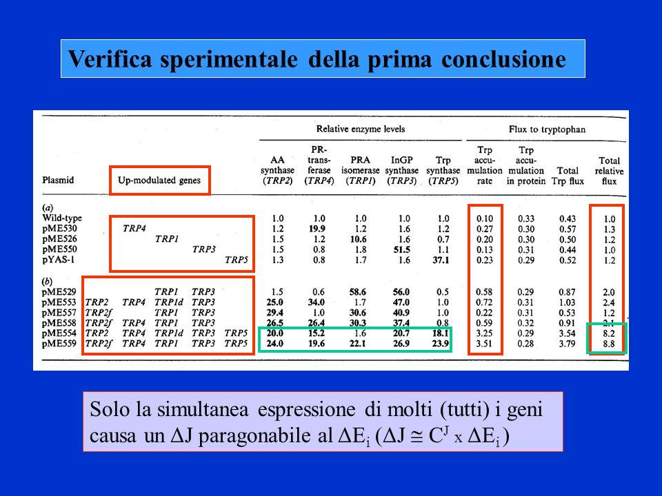 Verifica sperimentale della prima conclusione