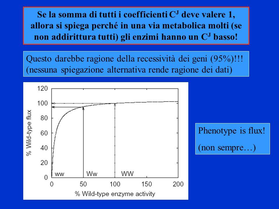 Se la somma di tutti i coefficienti CJ deve valere 1, allora si spiega perché in una via metabolica molti (se non addirittura tutti) gli enzimi hanno un CJ basso!