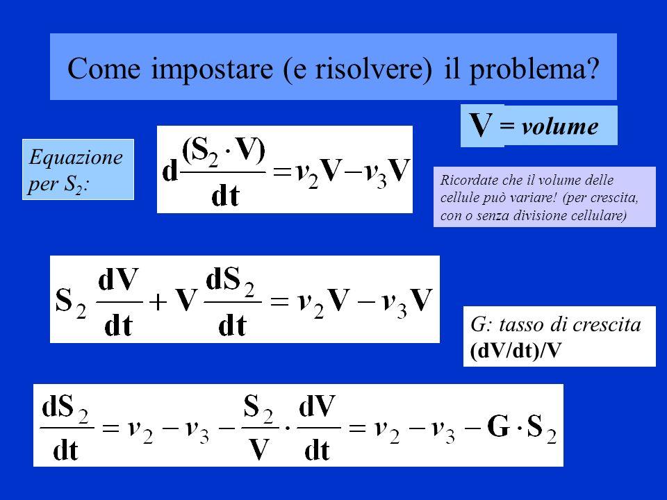 Come impostare (e risolvere) il problema
