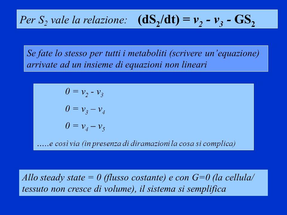 Per S2 vale la relazione: (dS2/dt) = v2 - v3 - GS2