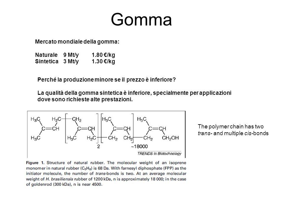 Gomma Mercato mondiale della gomma: Naturale 9 Mt/y 1.80 €/kg
