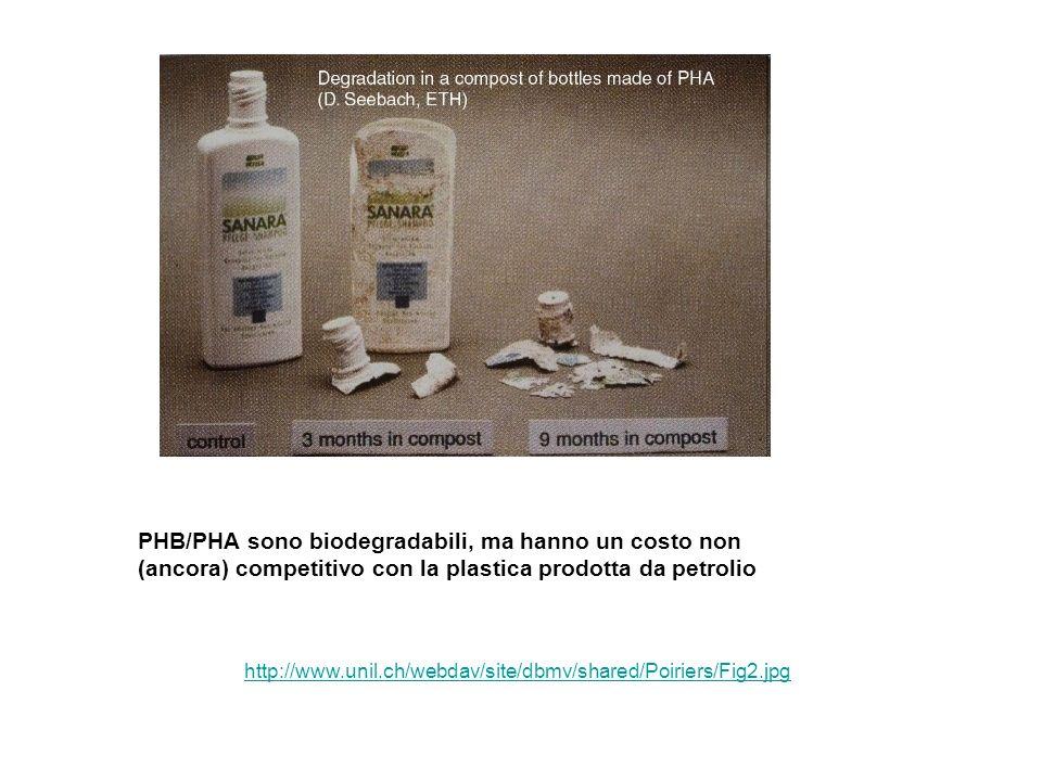 PHB/PHA sono biodegradabili, ma hanno un costo non (ancora) competitivo con la plastica prodotta da petrolio
