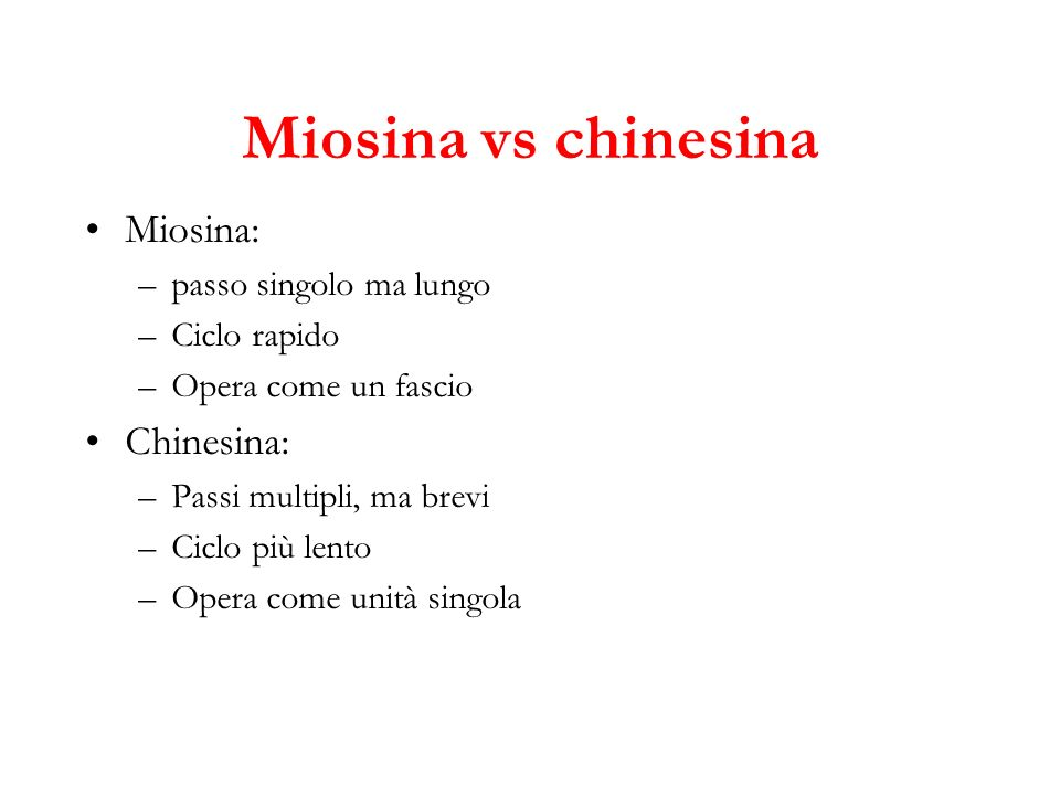 Miosina vs chinesina Miosina: Chinesina: passo singolo ma lungo