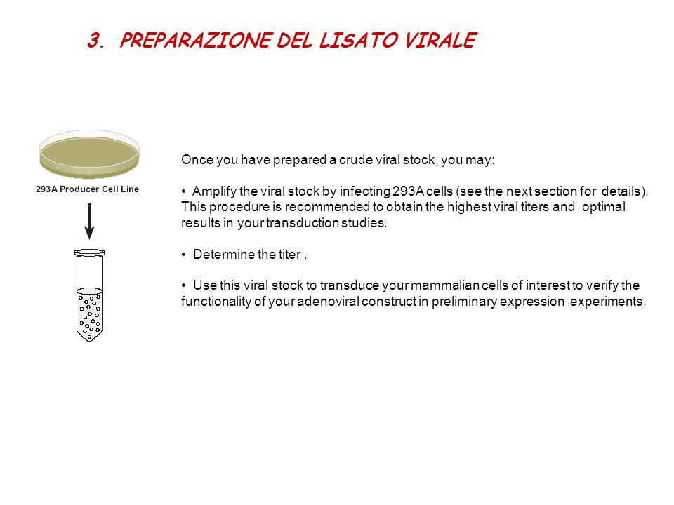 PREPARAZIONE DEL LISATO VIRALE