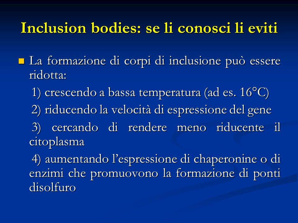 Inclusion bodies: se li conosci li eviti