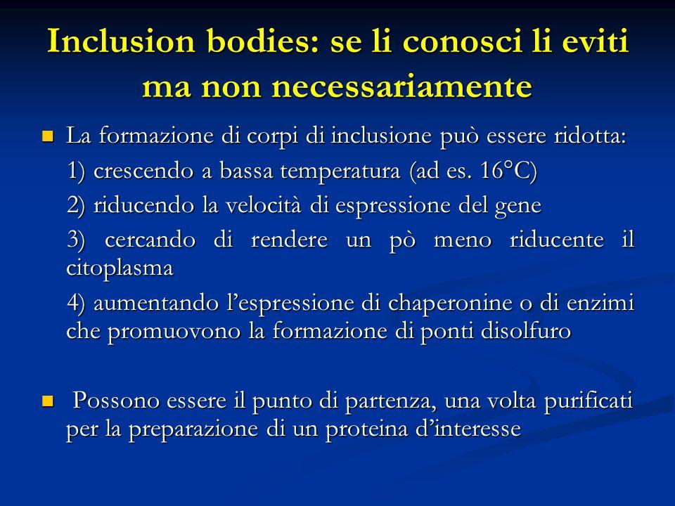Inclusion bodies: se li conosci li eviti ma non necessariamente