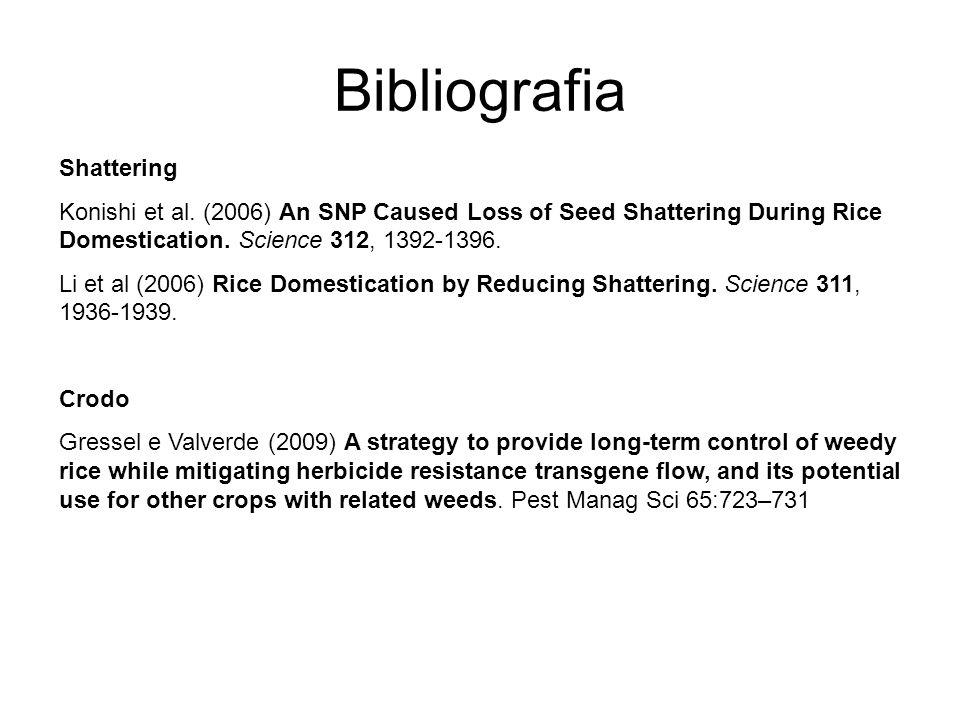 Bibliografia Shattering