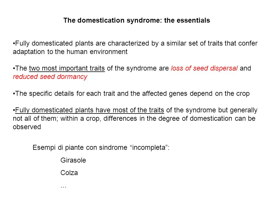 The domestication syndrome: the essentials