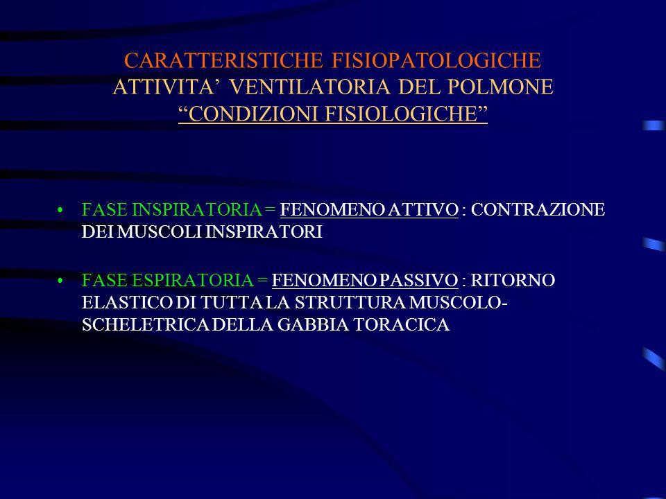 CARATTERISTICHE FISIOPATOLOGICHE ATTIVITA' VENTILATORIA DEL POLMONE CONDIZIONI FISIOLOGICHE