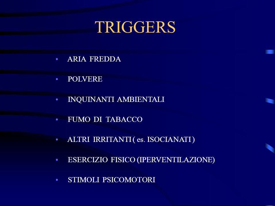 TRIGGERS ARIA FREDDA POLVERE INQUINANTI AMBIENTALI FUMO DI TABACCO