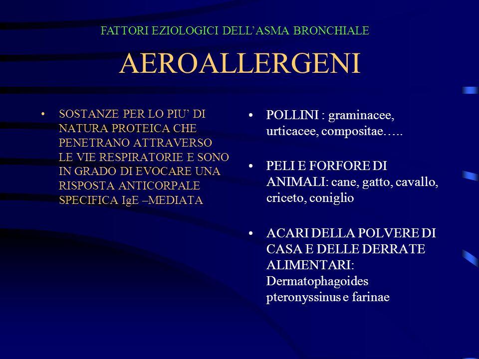 AEROALLERGENI POLLINI : graminacee, urticacee, compositae…..